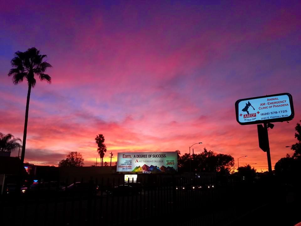 sunsetcontact