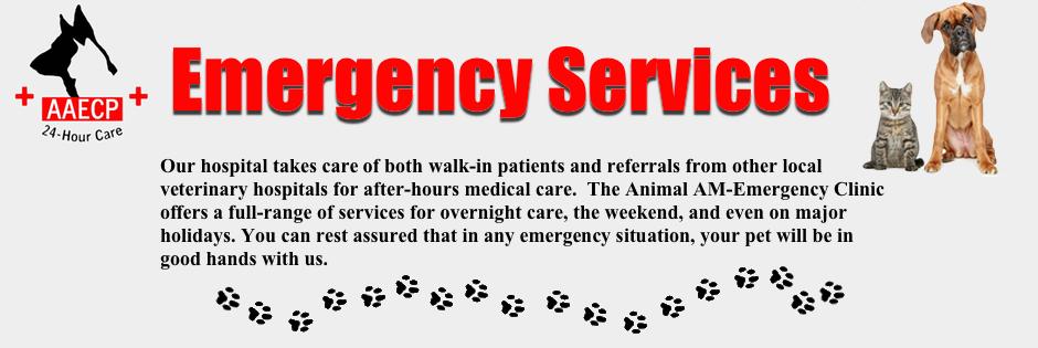 emergencyclinictop